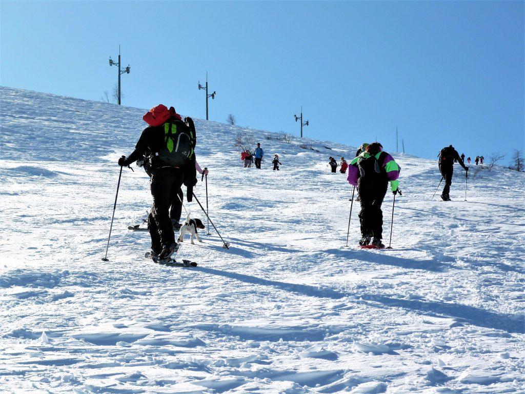 Ciaspolare e sciare in Val Sangone